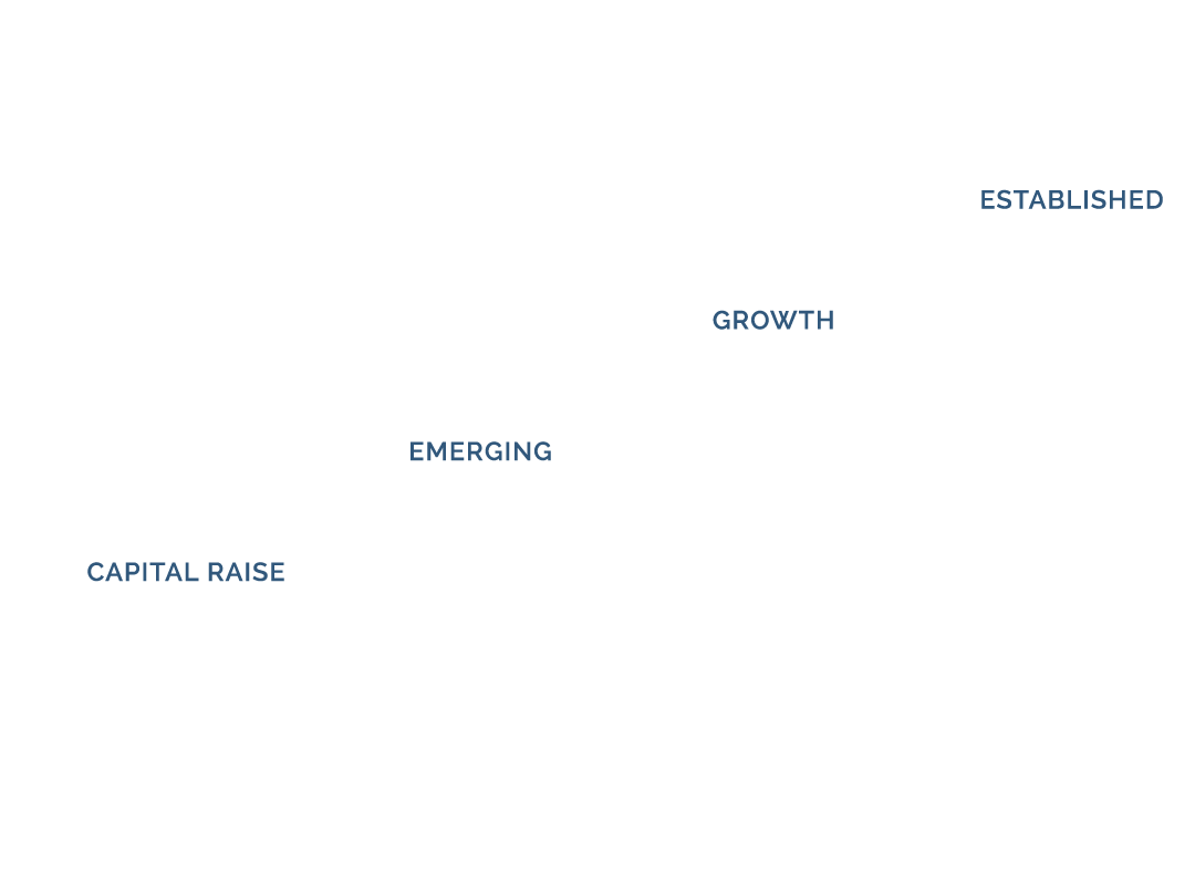 Steps of growth showing capital raise, emerging, growth, and established